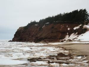 Ice at sea shore and cliff smaller.jpg